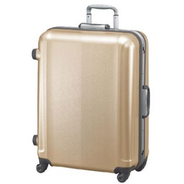 Фото Золотой чемодан на колесах 00373