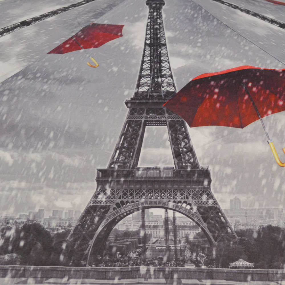 перевалов, картинки дождя в париже лыжах