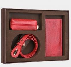 Подарочный набор NP009 красный