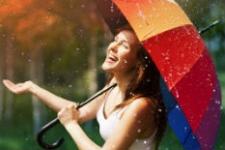 Зонты (138)